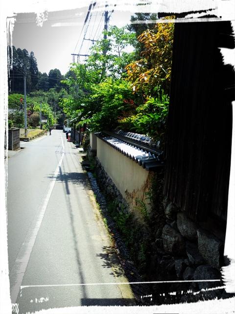 秋月の水路~その1