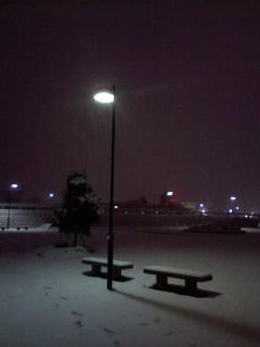 正月の雪景色
