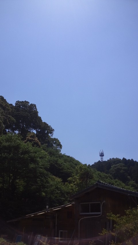 ファイル 956-1.jpg